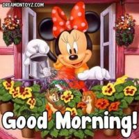 Minnie Morning