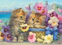 Kitties and Pansies