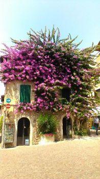 Lago di Garda house by Rune Berge