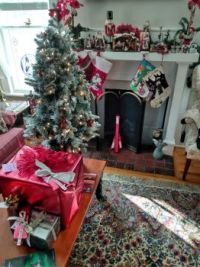 Christmas Tree and Hearth