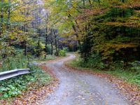 Country Road 151013 b  1477