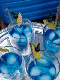 Polar Bear Cocktails 11.6.20