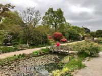 Another view of RHS Wisley Park Gardens.