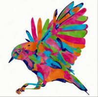 Rainbow Sparrow