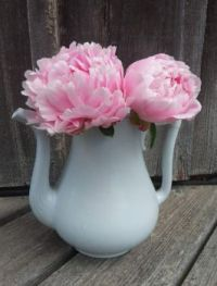 Pretty in Pink Ironstone