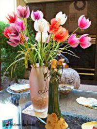 Flowers From Fran's Garden