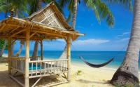 Tropical Vacation Paradise