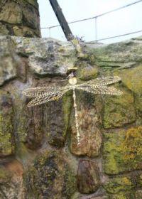 Scrap Metal Dragonfly