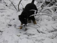 Snow for the first time