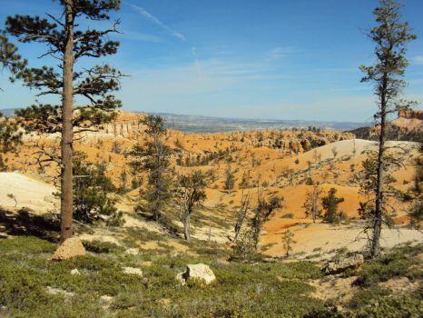 Bryce Canyon, Utah, USA