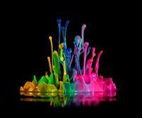Color Splash 2