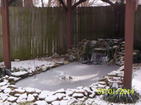 Our Pond in January 2014