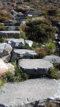 Ben Wyvis stone path = Munro mountain near Garve Scottish Highlands