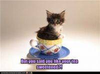 Super Sweets!: 1