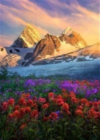 Summer Wilderness Pacific Range BC