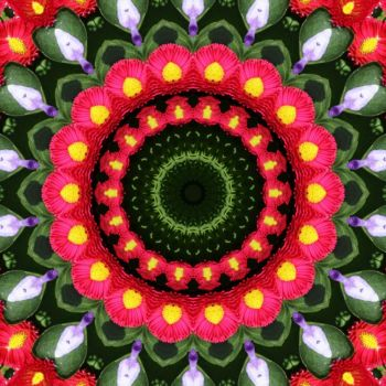 kaleidoscope 323 pink daisies medium