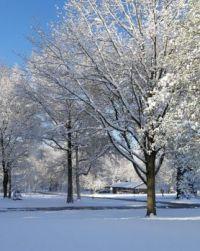 April 21 2021 Snow
