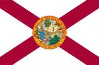 Fun With American Flags - Florida - Medium