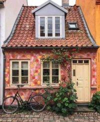 Cute Paint job