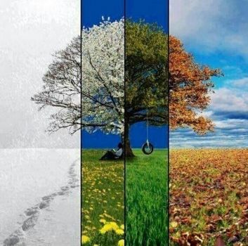 4 seasons without Frankie  Valli