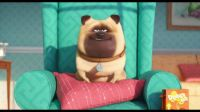 "Mel the pug from ""The Secret Life of Pets"""