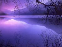 Purple Haze over Lake