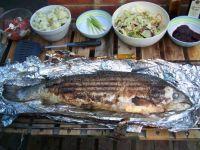 Salmon Barbecue