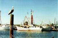 Tarpon_Springs Sponge Boats