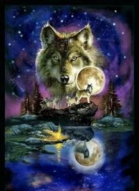 Beautiful wolf  art!