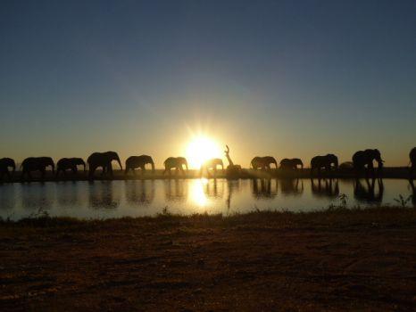 Camp Jabulani, South Africa