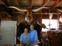 Longhorn shop in Fredericksburg Texas