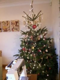 My Christmas Tree - all stitched up