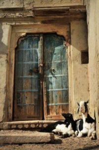 old door and two goats