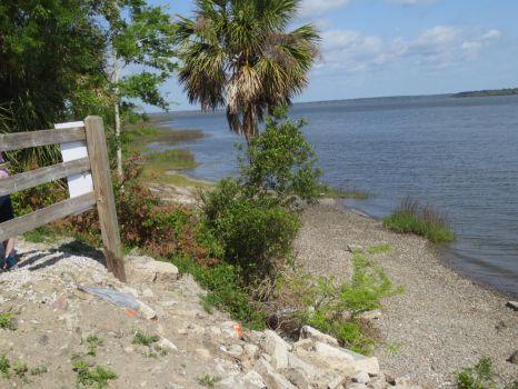 Coast near Charleston, SC