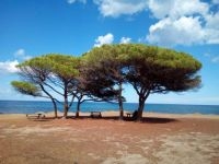 Sardinia: La Caletta