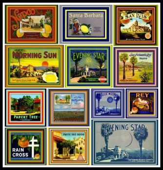 Vintage Fruit Crate Labels Depicting California Missions last batch