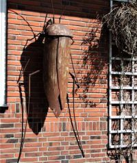DSCF1406 Sprinkhaan aan de muur.