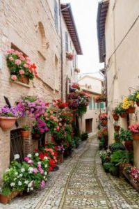 Medieval Town, Spello, Italy and Flower Festival