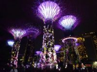 Laser show ,Gardens by the bay ,Singapore