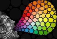 Amazing Circles-Ben Heine