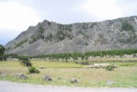 Valley in Yellowstone