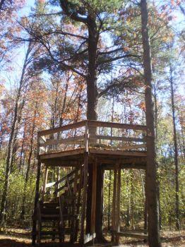 Schmeekle Treehouse