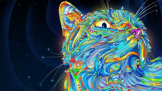 psychedelic kitty -- Matei Apostolescu