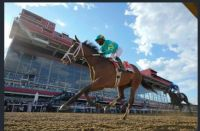 Army Wife wins Black Eyed Susan Stakes.