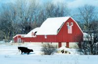 Red Barn in the Winter...