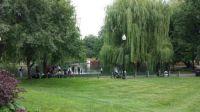 Boston Public Gardens - Swan Boat