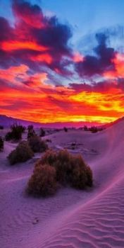 Sunrise at sand dunes, Death Valley National Park, California...Mesquite Flats