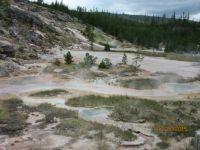 Eerie Yellowstone Scene