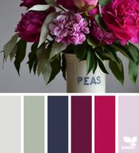 ColorFlora2_150