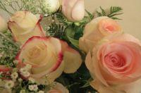 THEME - FLOWERS